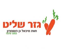 לוגו גזר שליט