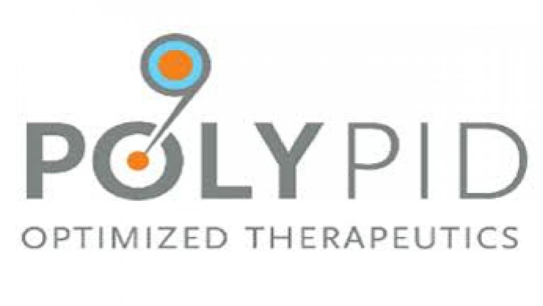 מגזרים – Polypid – הייטק