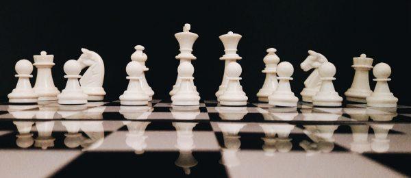 אסטרטגיה עסקית ארגו